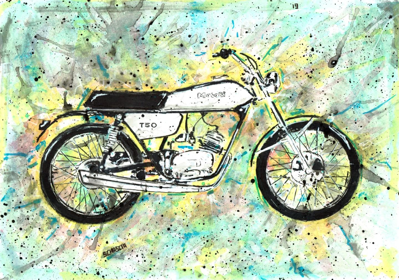 Schascia - T50 Color